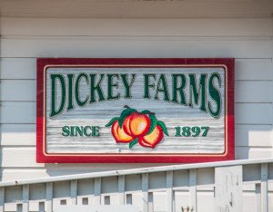 Dickey Farms